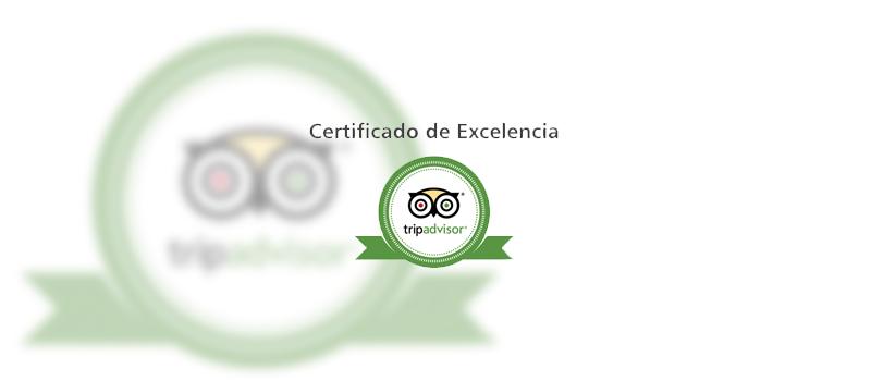 Certificado de excelencia Tripadvisor